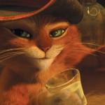 """El Gato con Botas maulla """"Namasté"""""""